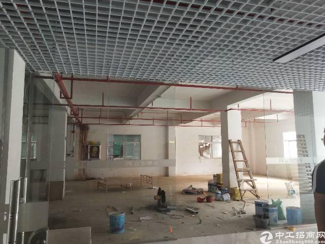 观澜观平路全新改造写字楼单层面积500平