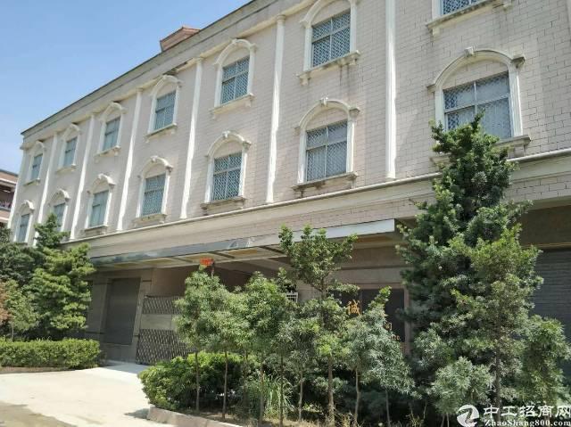 万江花园式独院厂房出租厂房2500平方宿舍办公1200平方