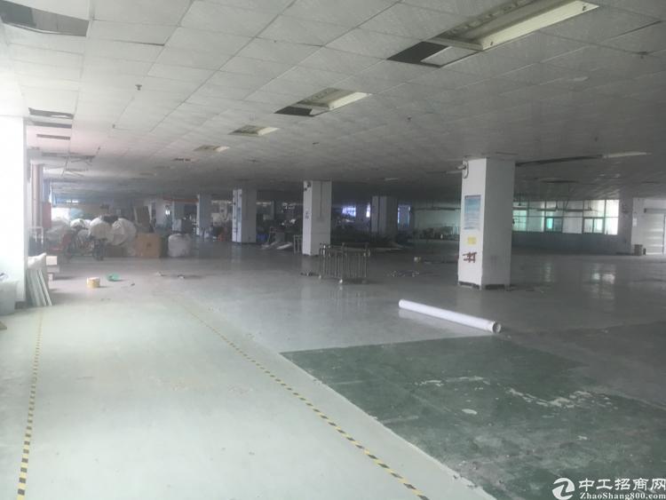 福永塘尾地铁口附近出两万平方物流园-图2