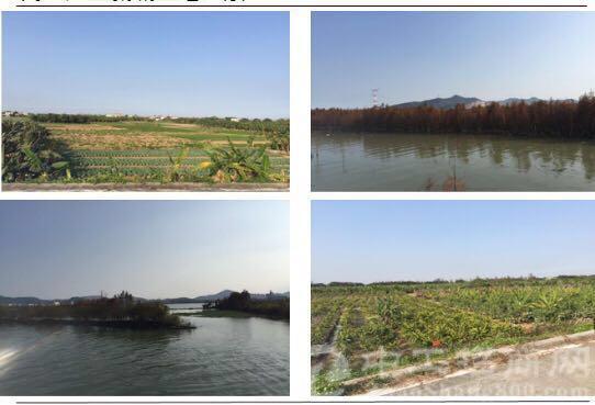 中山民众产业新城土地出售
