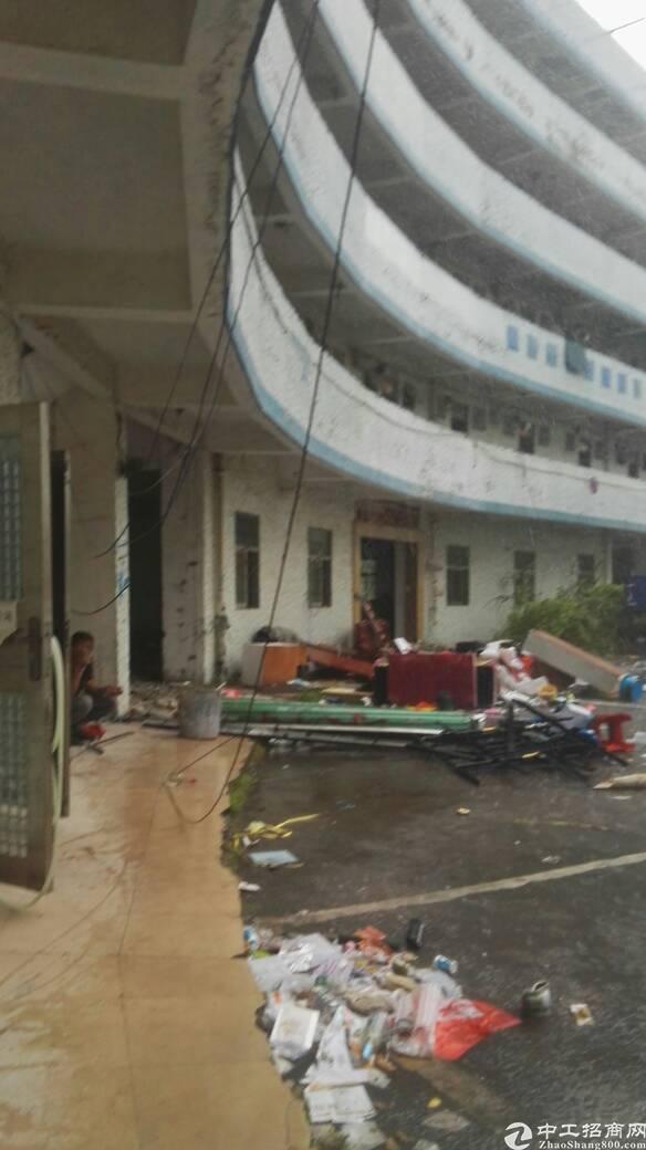 布吉丹竹头地铁站附近新出4800平公寓宿舍
