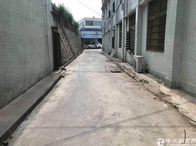 观澜福民新出厂房500平