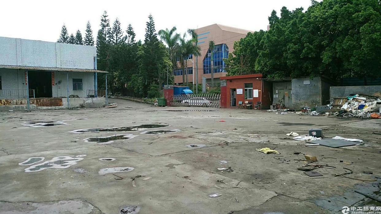 龙岗中心城原房东 独院钢构厂房  带卸货平台