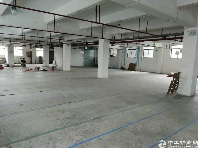西乡鹤洲富源工业城3楼900平带消防喷淋