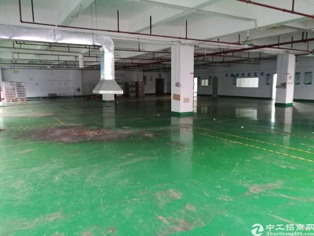 西乡宝田工业园楼上986平米出租-图4
