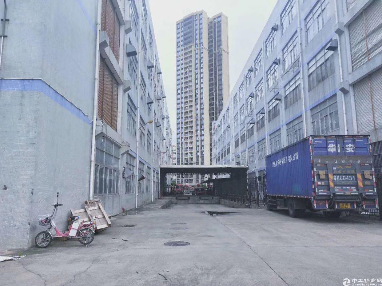 坂田雪象新出40000平方标准厂房1-5屋单屋5000平方