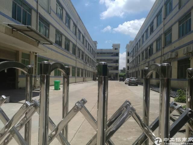 龙岗同乐7400平独院厂房出租,带地坪漆