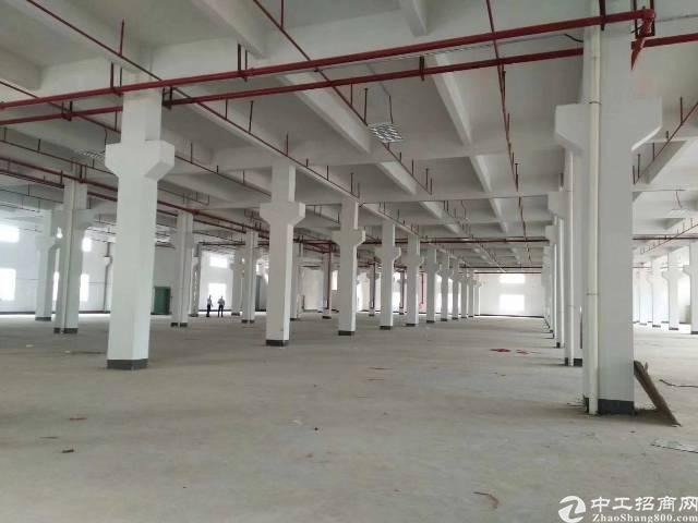 平湖华南城边独门独院仓库招租