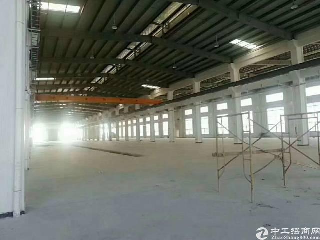 东莞市全新带红本3万平米厂房出租-图4