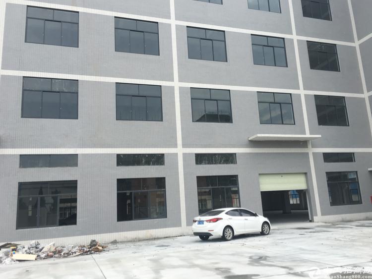 大型工业园分租一楼1200平米招租