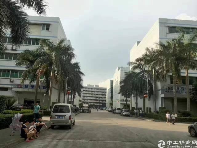 沙井西部工业区新出楼上整层2560 平米厂房出租-图4