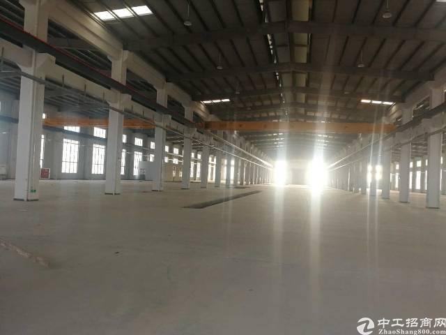 沙井黄埔原房东33000平全新钢构出租