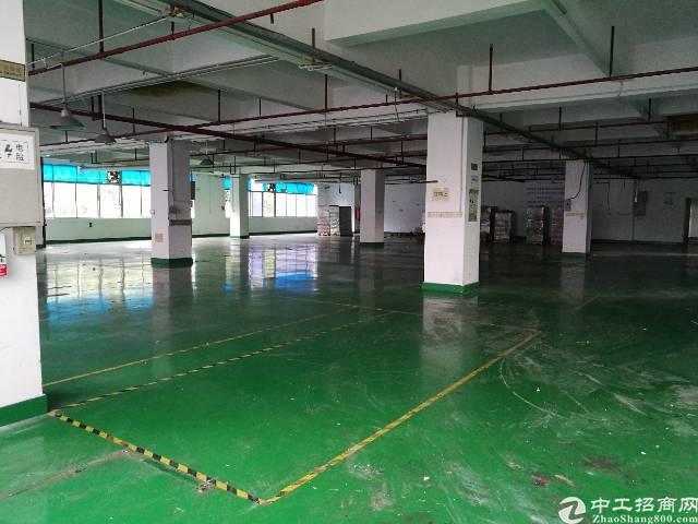 西乡宝田工业园楼上986平米出租-图2