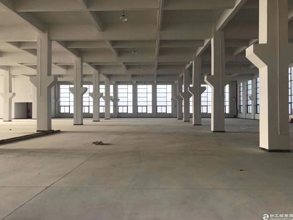 工业区新出一楼1500方出租