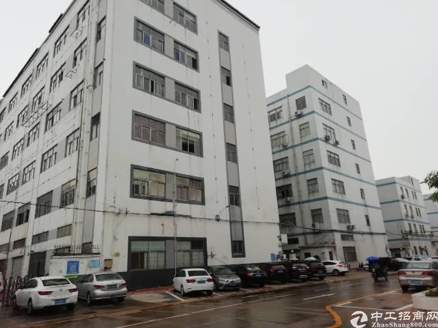 福永怀德新出原房东1万平厂房无公摊价格优惠