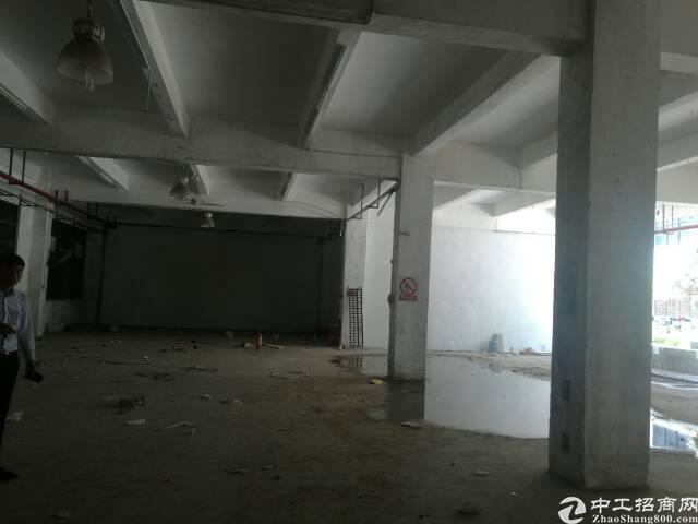 龙岗同乐一楼560平厂房出租