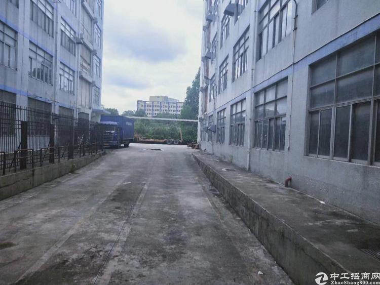 厂房位于坂田下雪附近共有10万平方