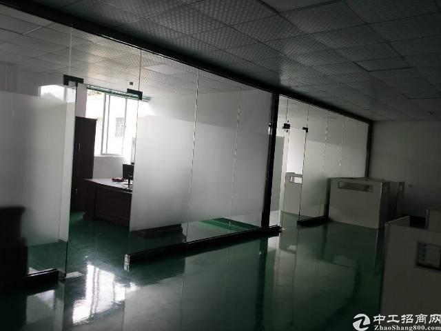 光明新区田寮3楼1000平豪华装修22/平-图7