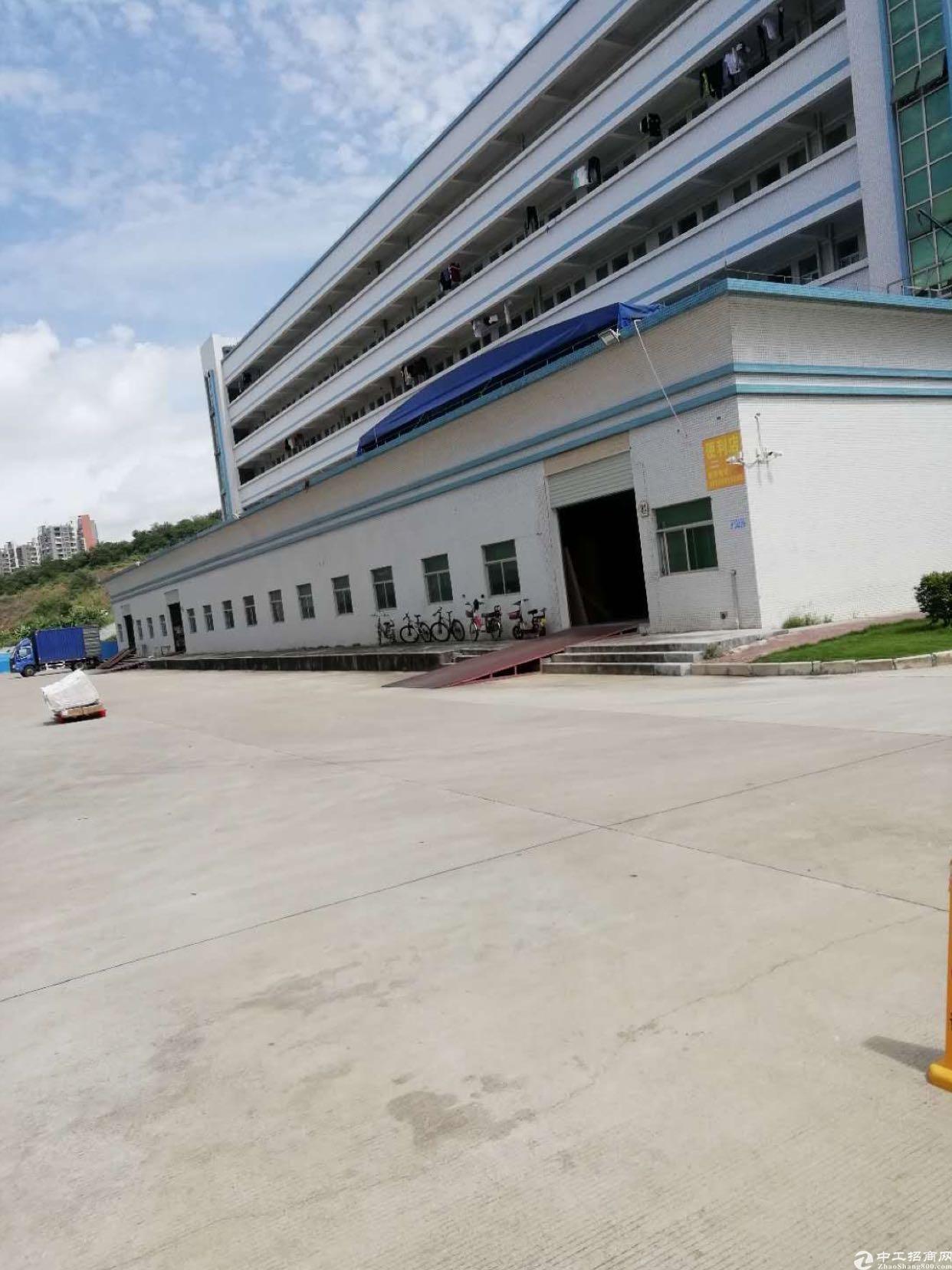 凤岗东深路旁独院18000平9成新厂房