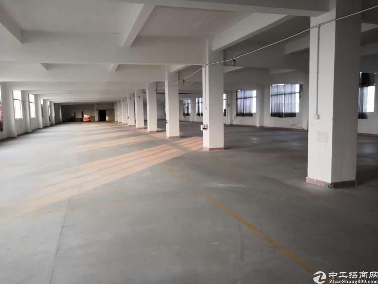 龙岗坪地中心村独院15000平出租可分租-图2