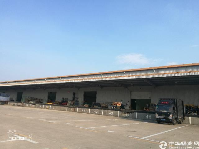 坂田高速口大型物流园带自动升降卸货平高10米钢结构招租