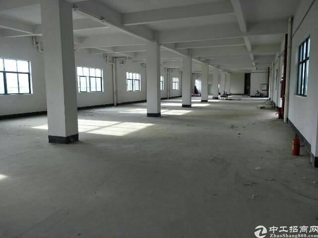 工业园新空出标准一楼厂房