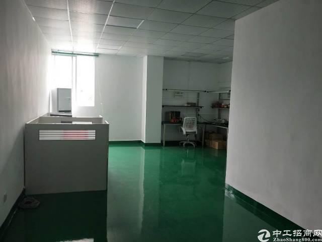 光明新区田寮3楼1000平豪华装修22/平-图4
