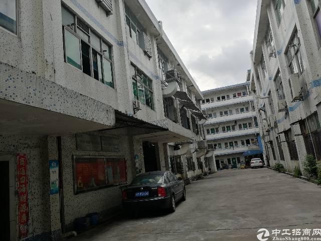 沙井107国道旁新出3楼1350平方,租金22元每平方精装修