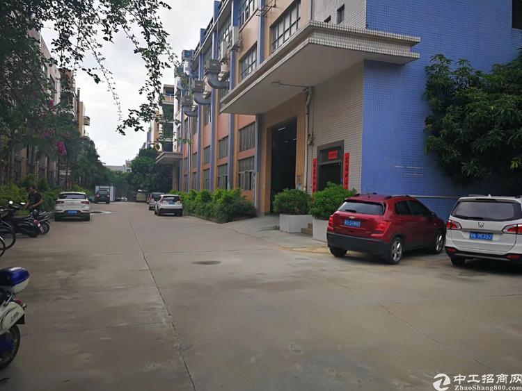 沙四1-3楼4500平米独院出租