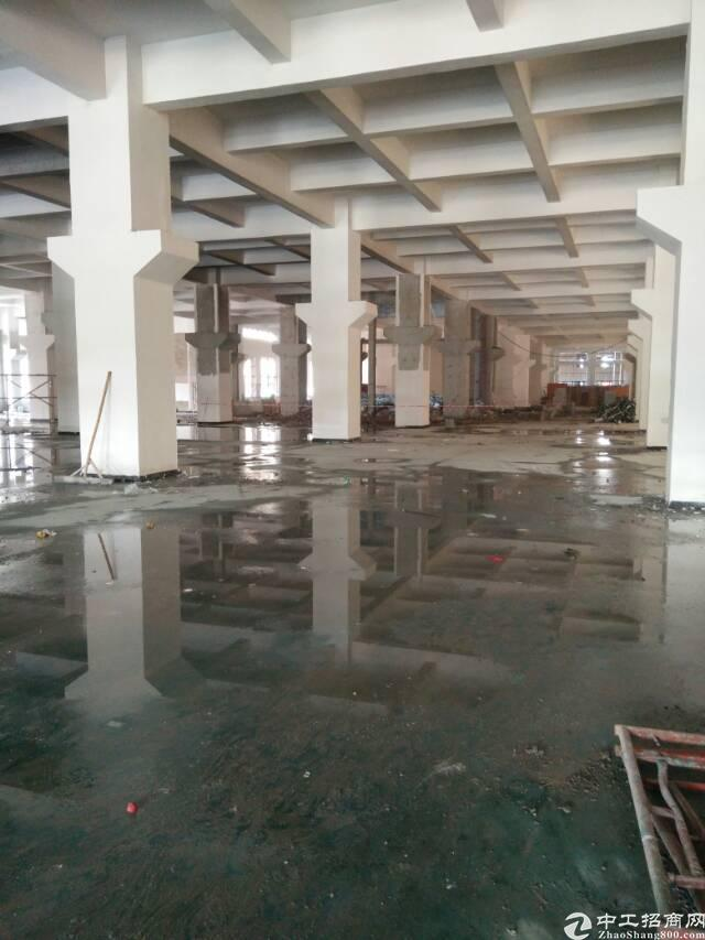 标准重工业厂房一楼