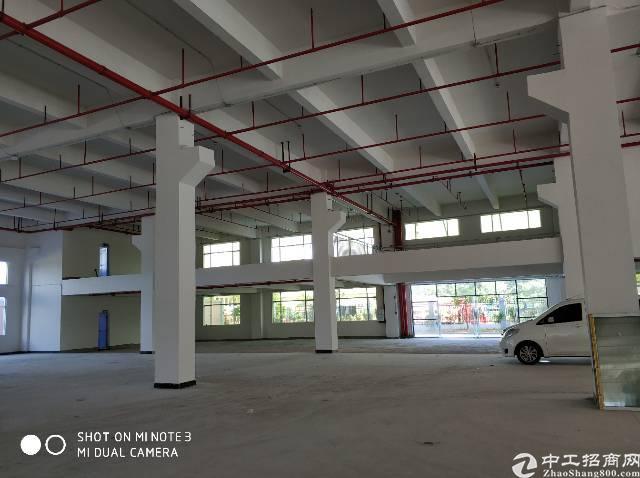 标准厂房带牛角高度7米3000平方