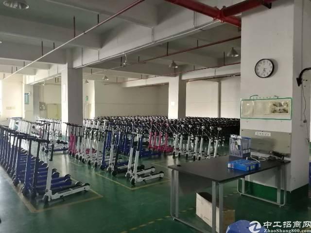 沙井镇大王山楼上精装修整层3300平米厂房出租-图3