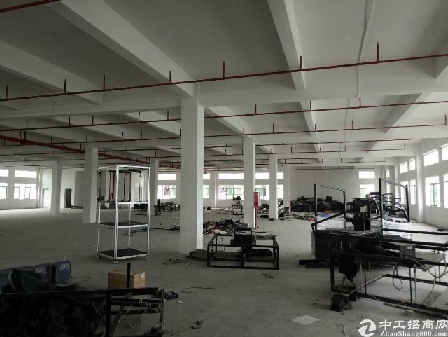 工业区一楼厂房1300平方