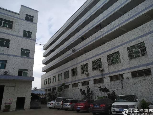 高速路口宿舍3楼豪华装修办公室出租,面积750平报价6000