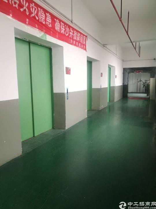沙井镇大王山楼上精装修整层3300平米厂房出租