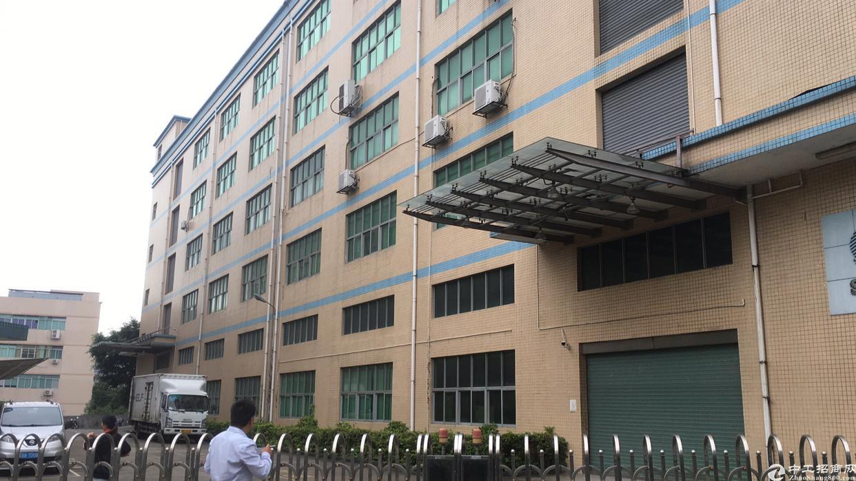 西乡九围勒竹角市场旁,整栋12500平方米,租金30元月。