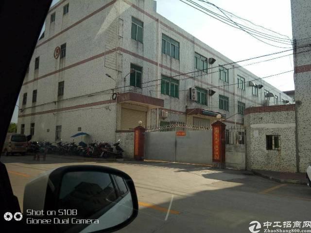松岗燕川原房东独门独院厂房5500平米