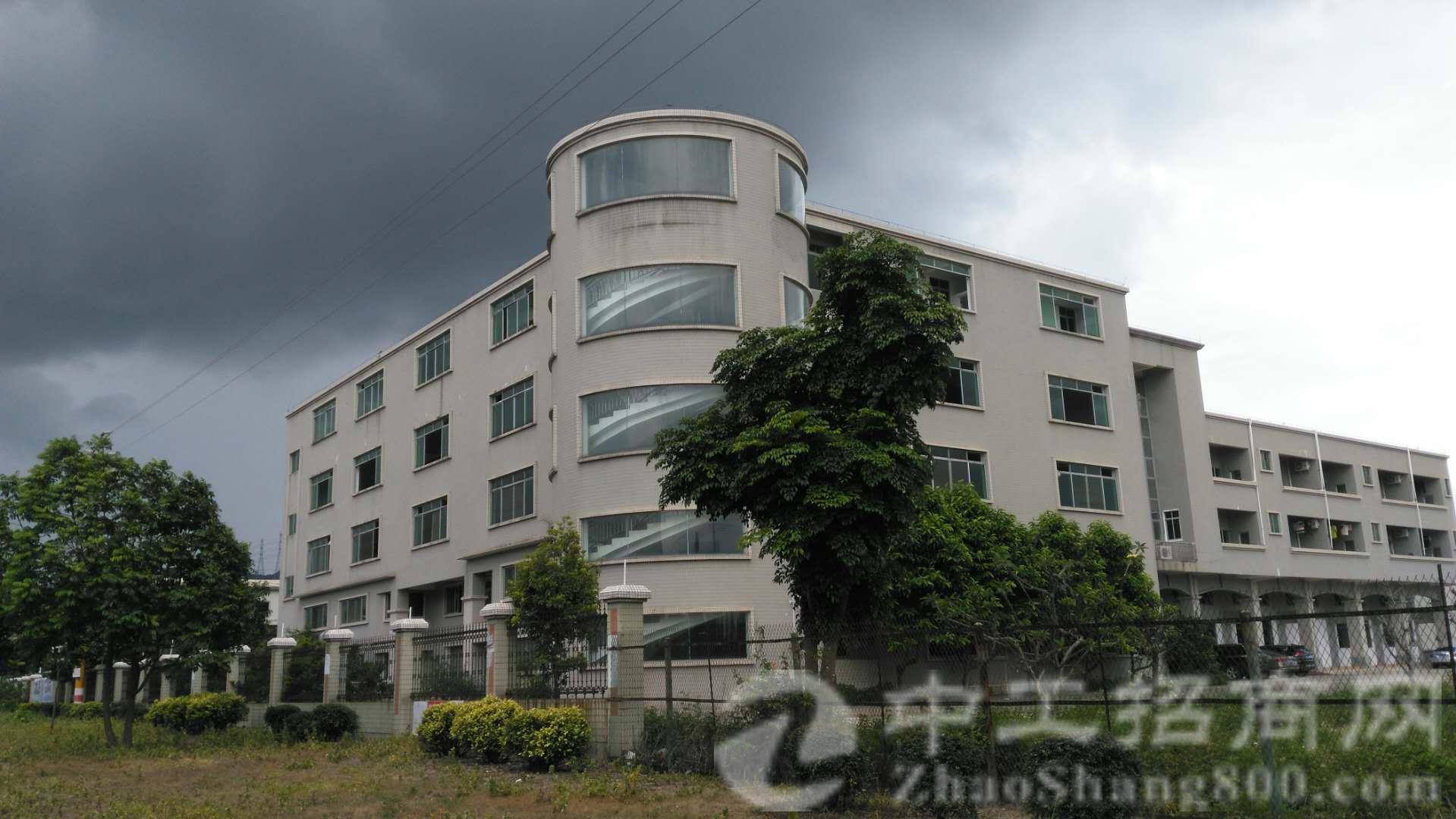 茶山镇占地30768㎡ 建筑31700㎡ 国土证厂房出售