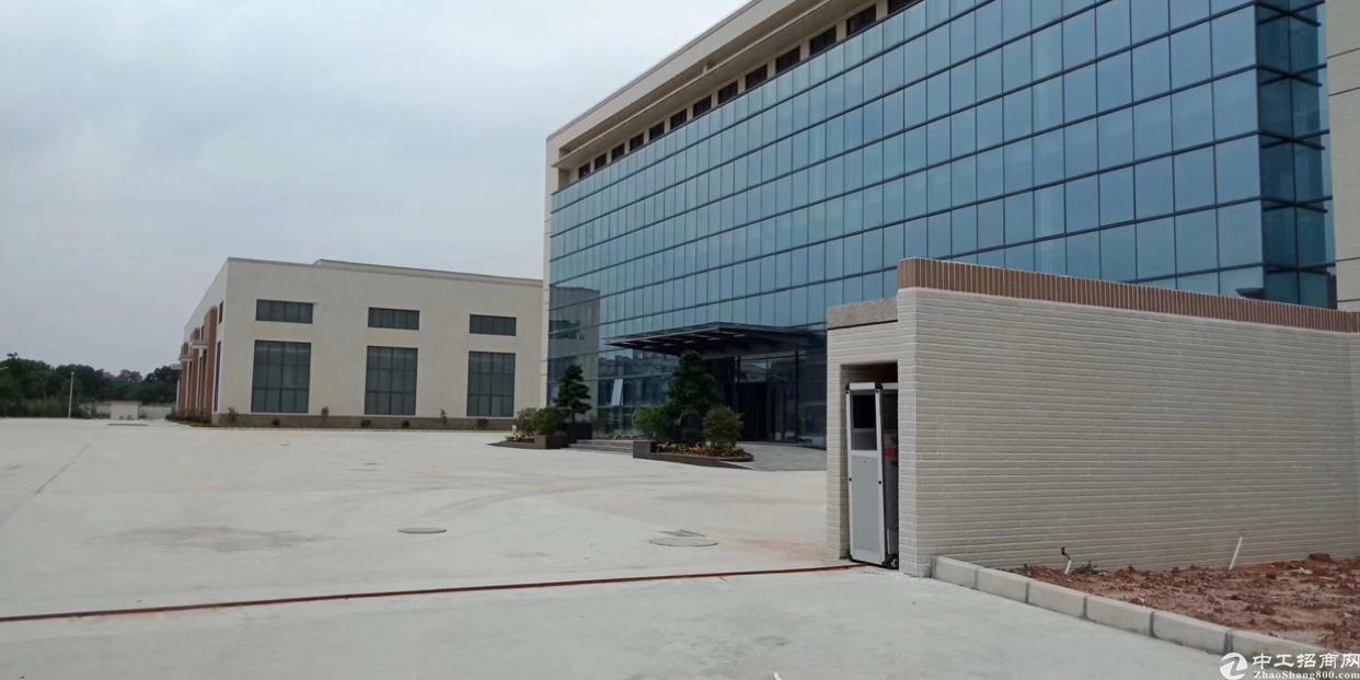 黄江镇刚出新建高大上单一层独院厂房