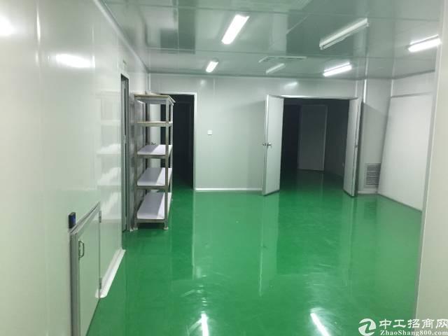 西乡固戍地铁站附近转租3楼500平-图3