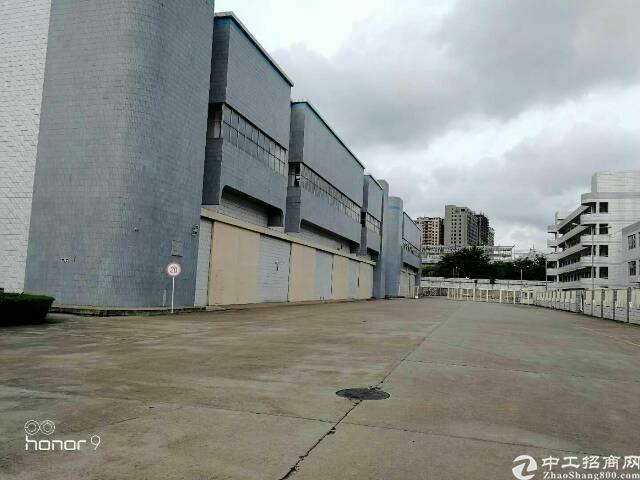 福永最漂亮的钢构厂房