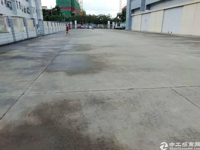 福永红本物流仓库48000平方面积大小分租-图3