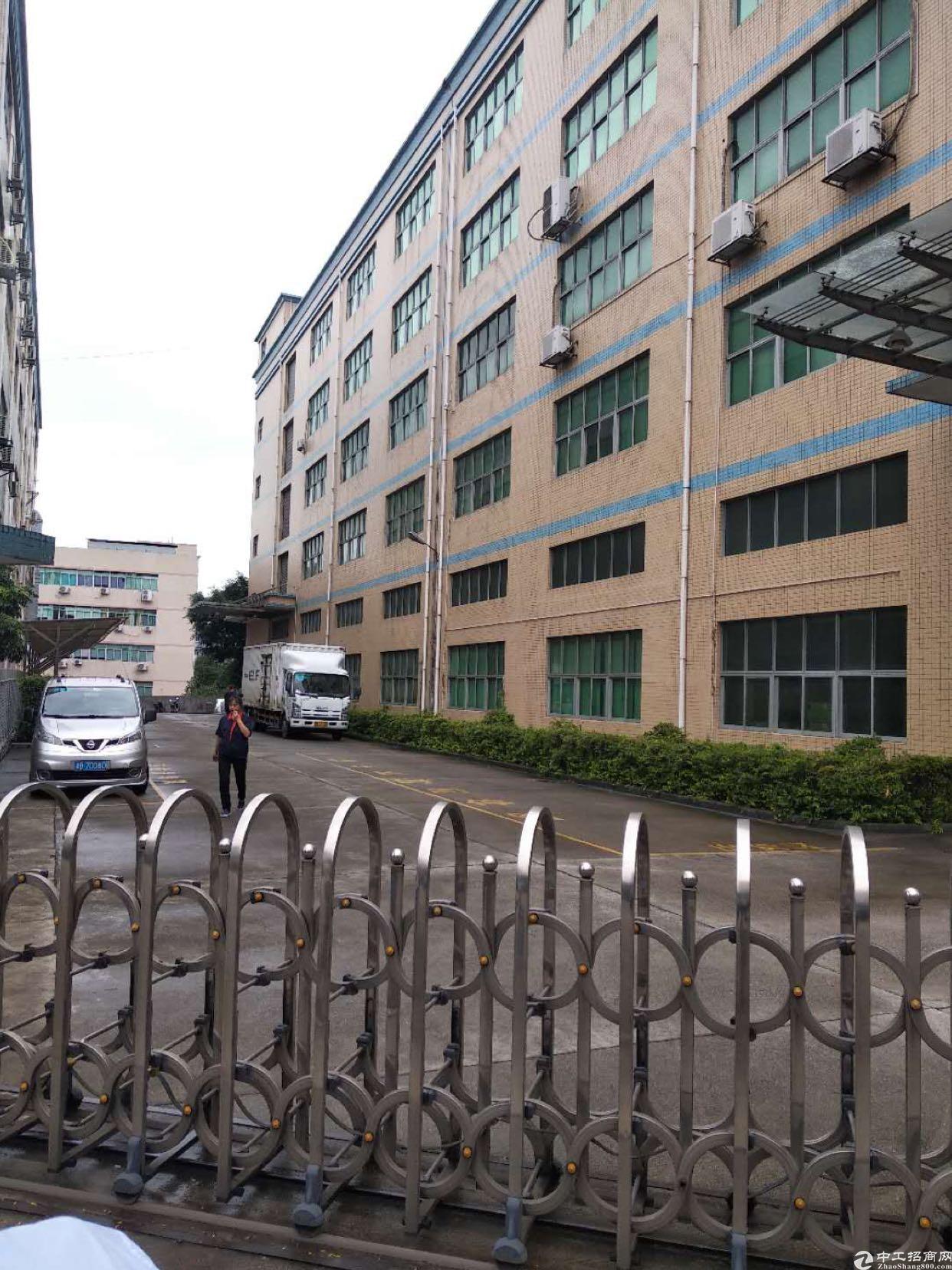 西乡九围大型工业区楼上1800平厂房出租