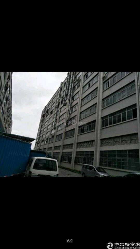 石岩水田新出楼上3200平方红本厂房招租