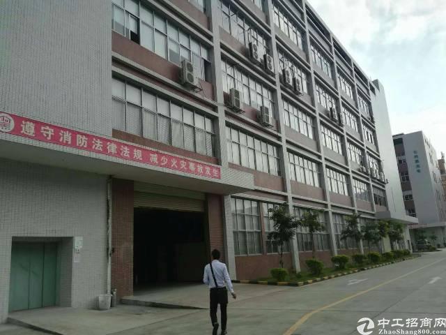 西丽阳光工业区原房东3200平米整层招租