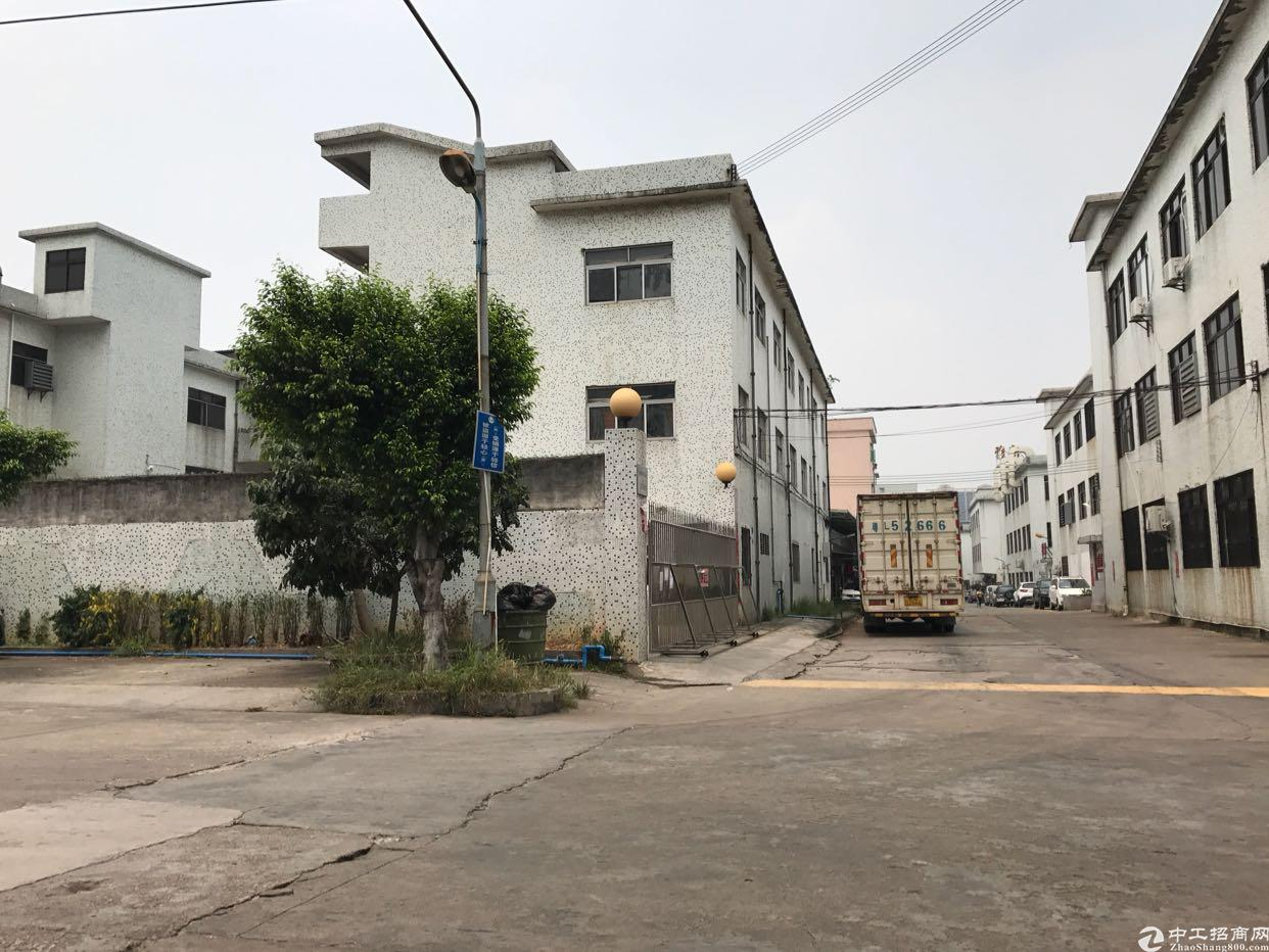 建筑7500平米仅售2000万