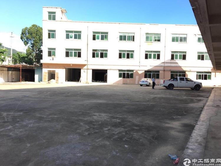 坪山独院6800平方米出租可分租