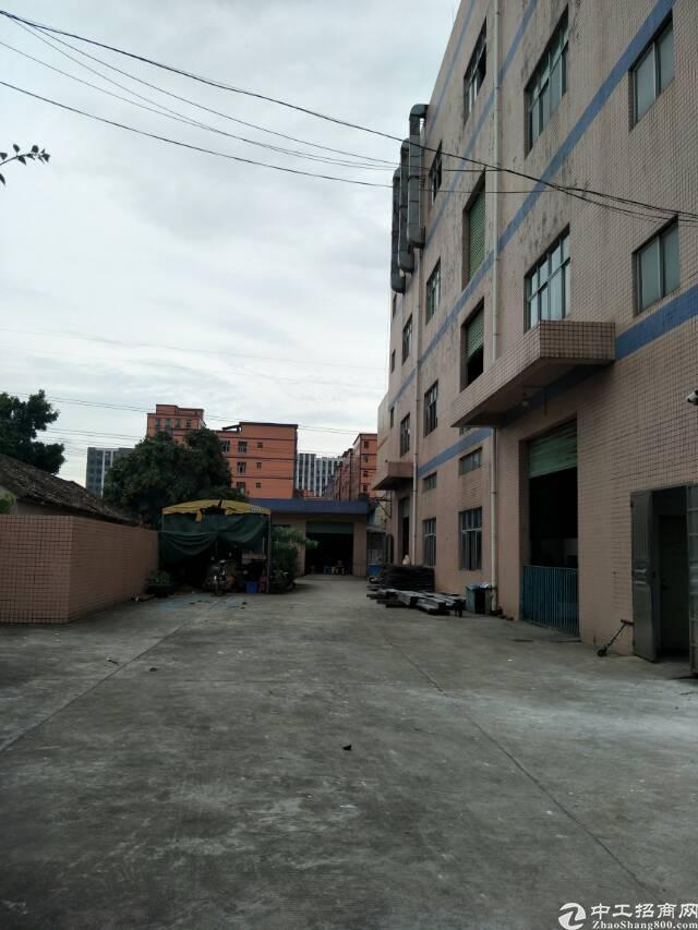 公明松柏路边独院厂房出租-图2