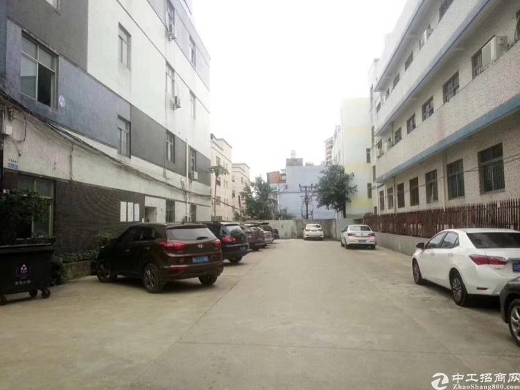 布龙路边上1楼新出1楼920平,豪华装修,适合cnc等重工业