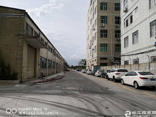 石岩高速口带牛角重工业厂房1楼2800平接受各种行业可分租